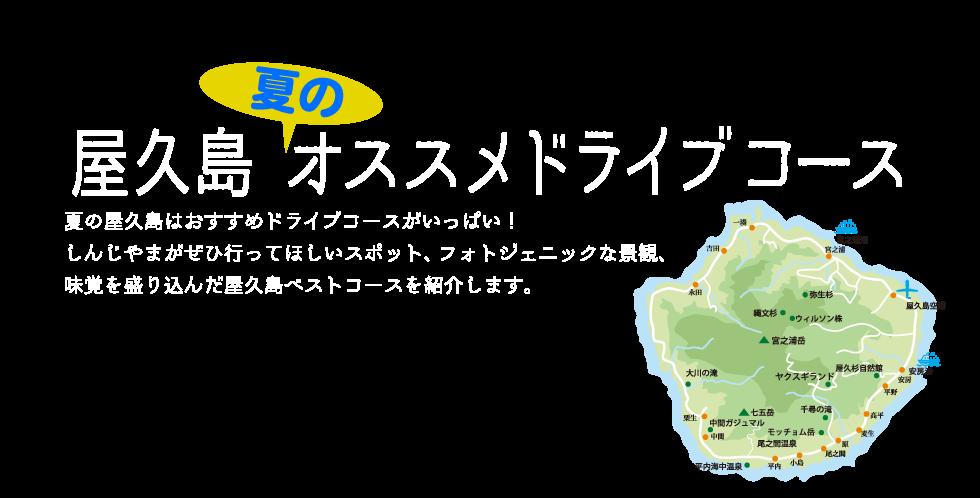 屋久島夏のオススメドライブコース