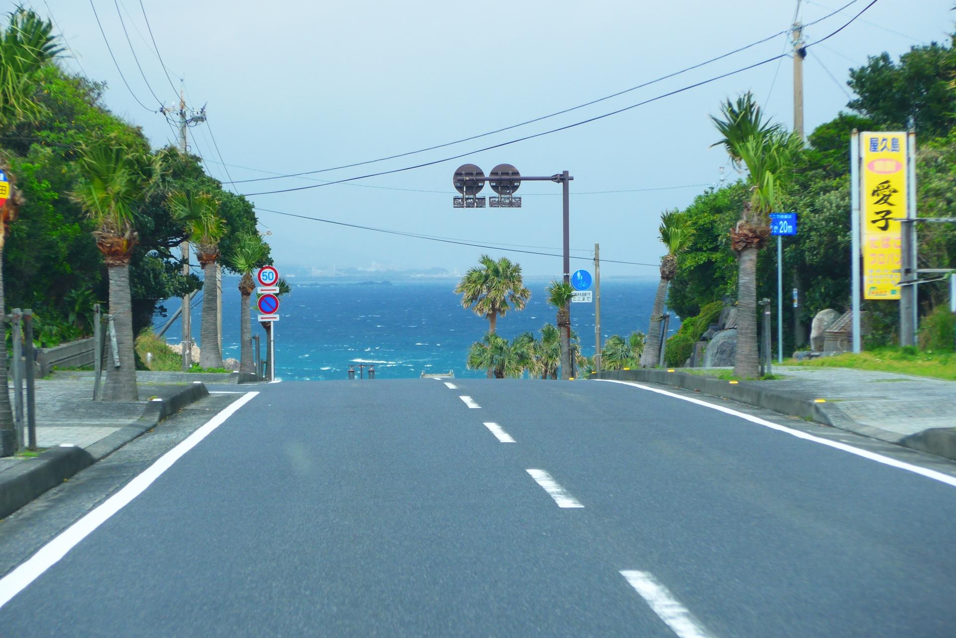 屋久島の道路